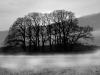 Uge_17_vinter_landskab
